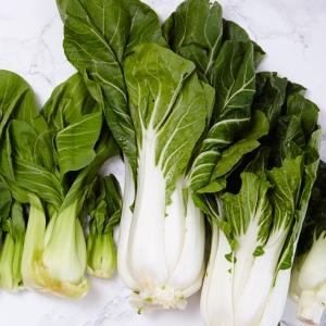 tout_spring-produce-bok-choy_665x665