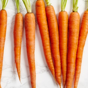 tout_spring-produce-carrots_577x577