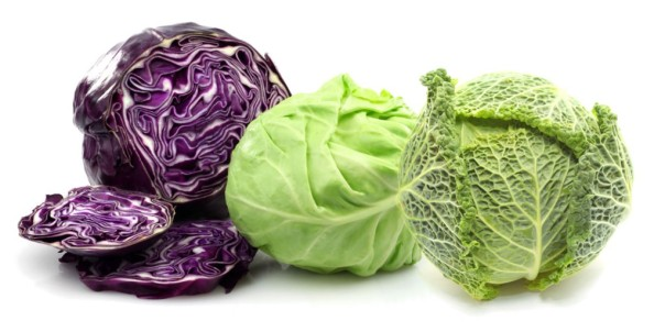 cabbage-trio-1024x512.jpg