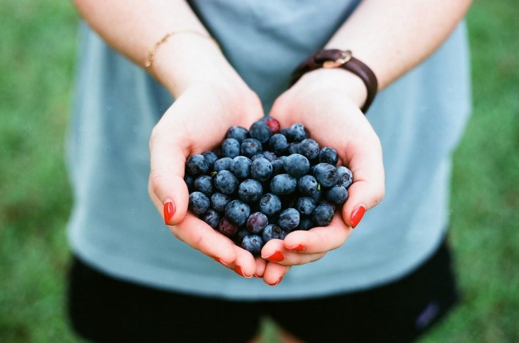 blueberry_1524145422.jpg