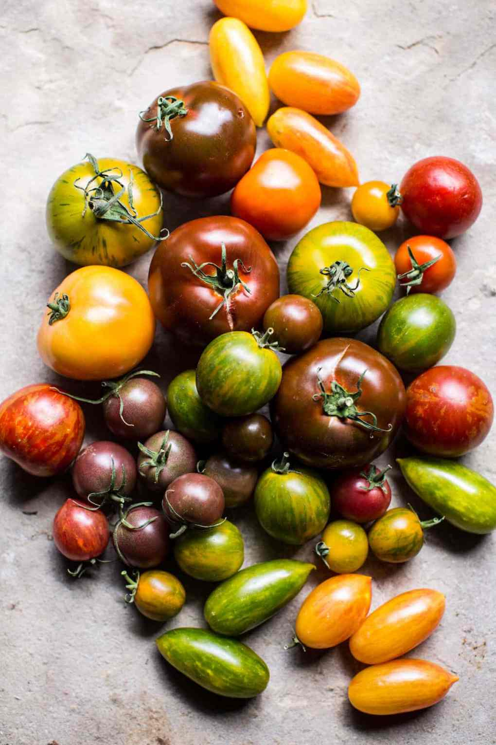 Heirloom-Tomato-Cheddar-Tart-with-Everything-Spice-2